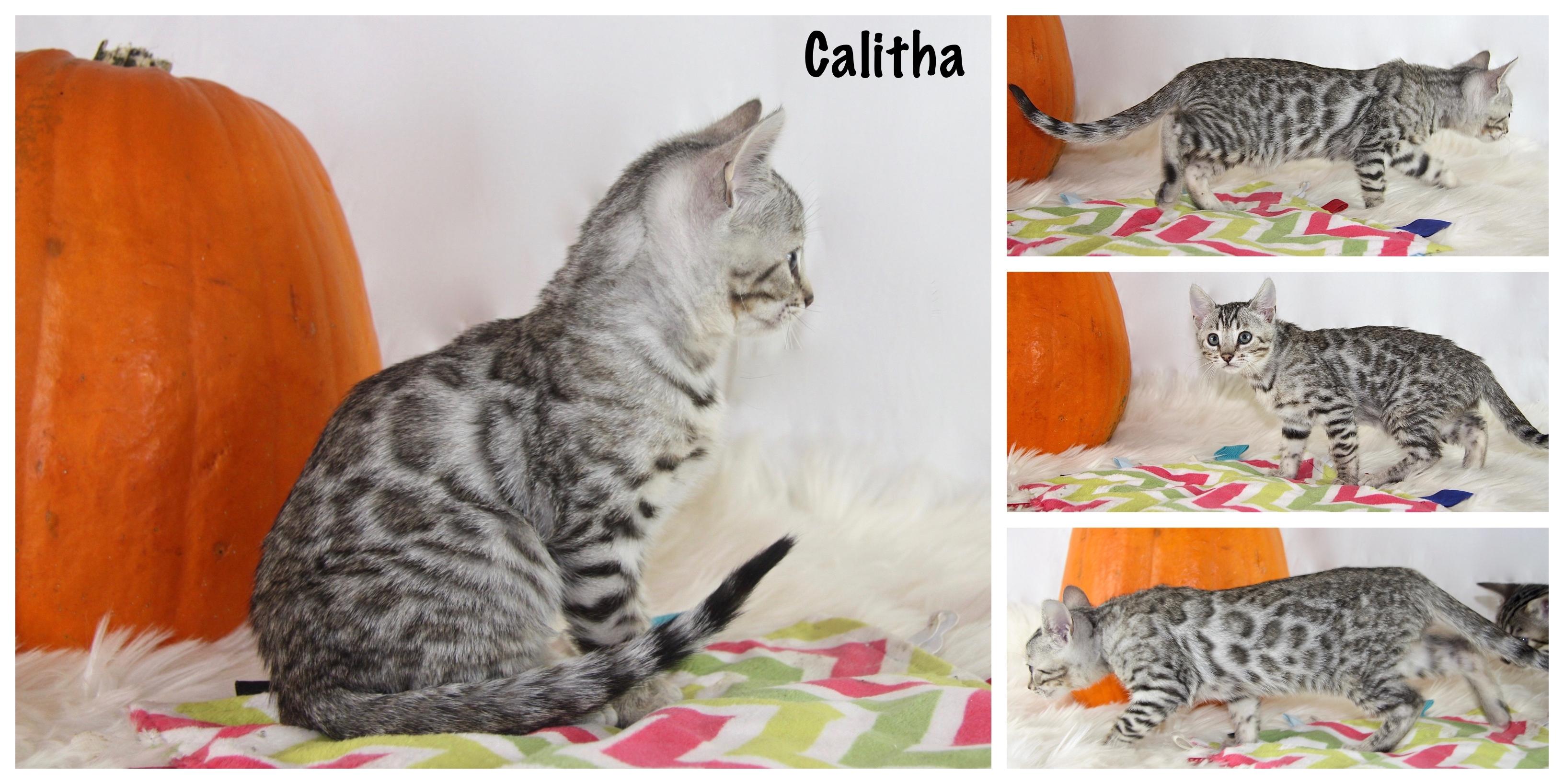 Calitha 9 weeks