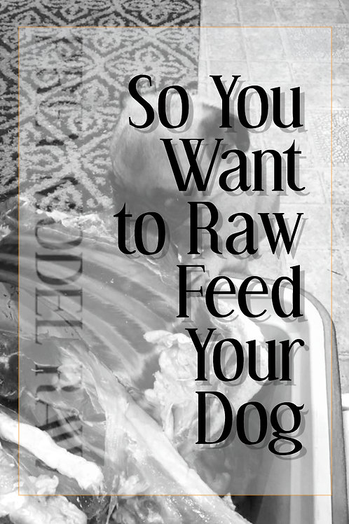So You Want to Raw Feed Your Dog