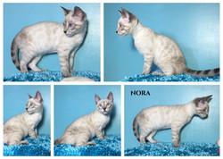 Nora 15 weeks