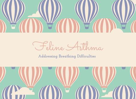 Feline Asthma