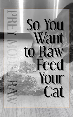 So You Want to Raw Feed Your Cat Soft Cover Book