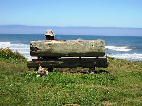 Woman Bench Dog.JPG