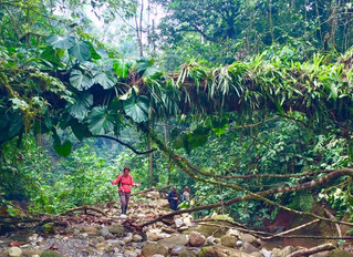 Learning leadership skills through adventures in the Amazon Rain Forest