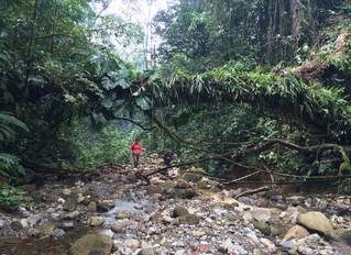 Spirit of adventure into the Peruvian Amazon