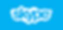 Spinelegal - Skype.png