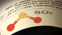 Sulfites in wine: friend or foe?