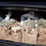 weed-the-homeless-cannabis-skid-row-kare