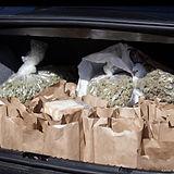 weed-the-homeless-cannabis-skid-row-kare