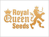 royal-queen-seeds-768x576-1.jpg