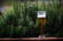 alcohol-beer-beverage-995686.jpg