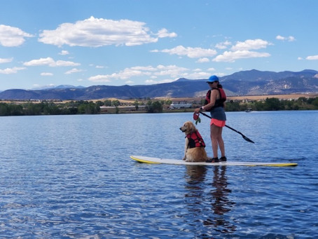 Outside the Law: Patricia M. Jarzobski and Paddle Boarding