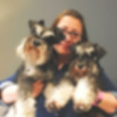 This is Moo Moo & Bear, two gorgeous sewing schnauzers (ha ha) and their Mum!