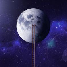 להגשים חלום או להמשיך לחלום?