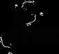 main logo black-01 (1).png