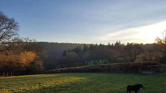 The view from the top field at Wonham Oak holidy cottages in Bampton, DevonDevon