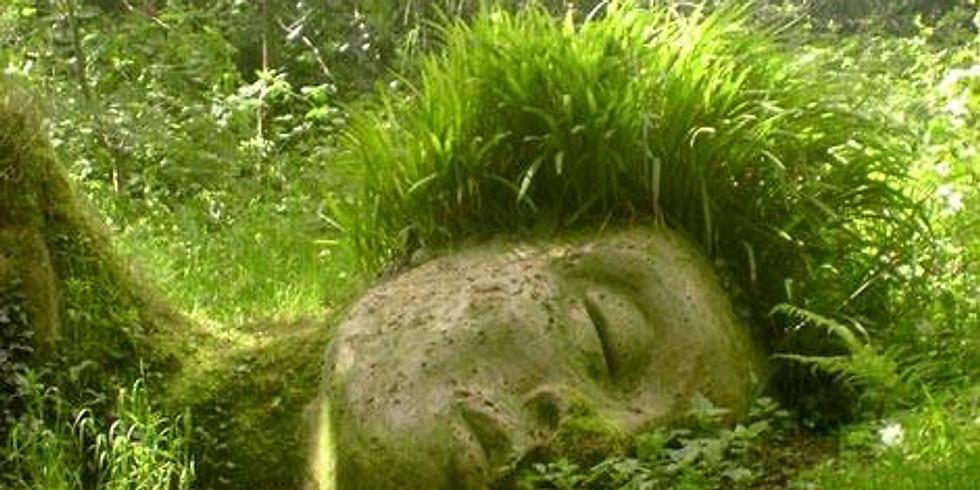 ⌘  Yoga Nidra Facilitator Training (Trauma-Informed)