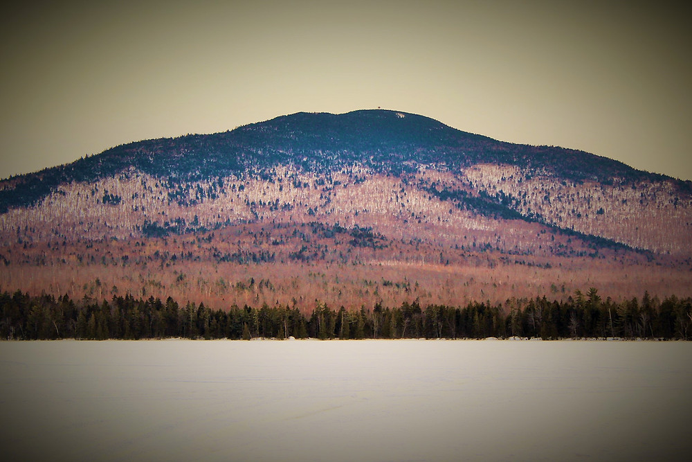 Mt Blue