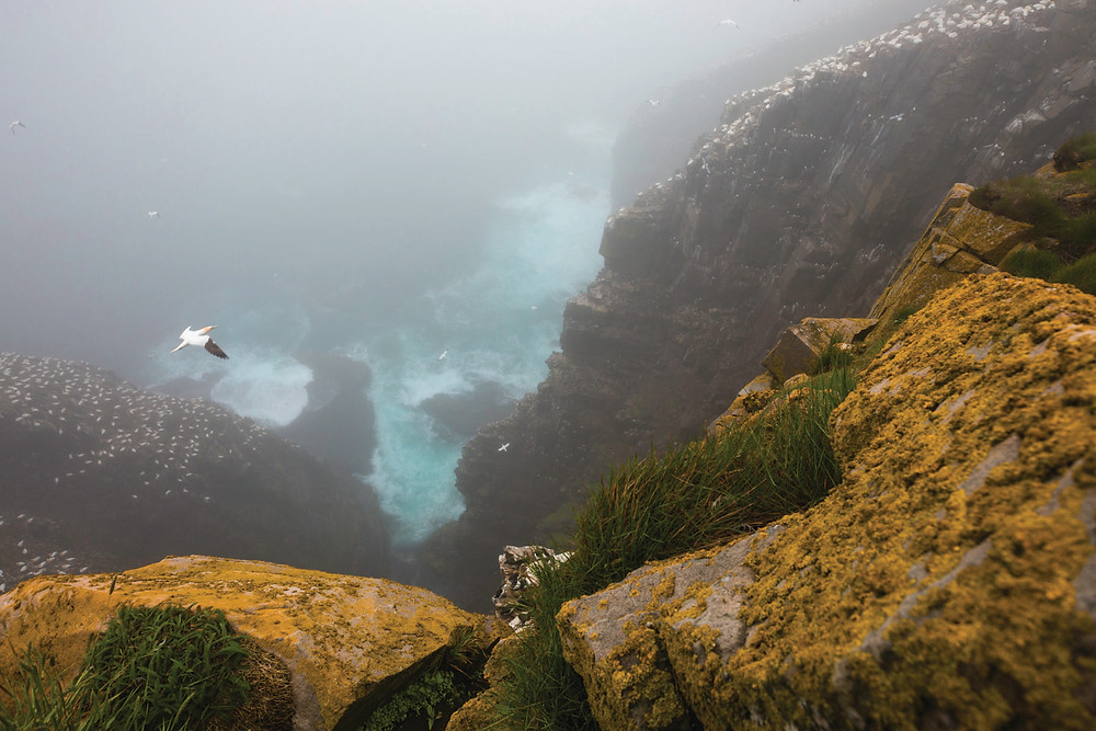 www.danilefrancois.com landscape photography