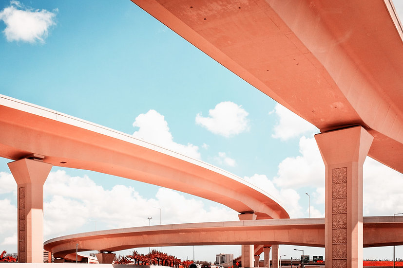 Dolphin Expressway #005 - Limited Edition