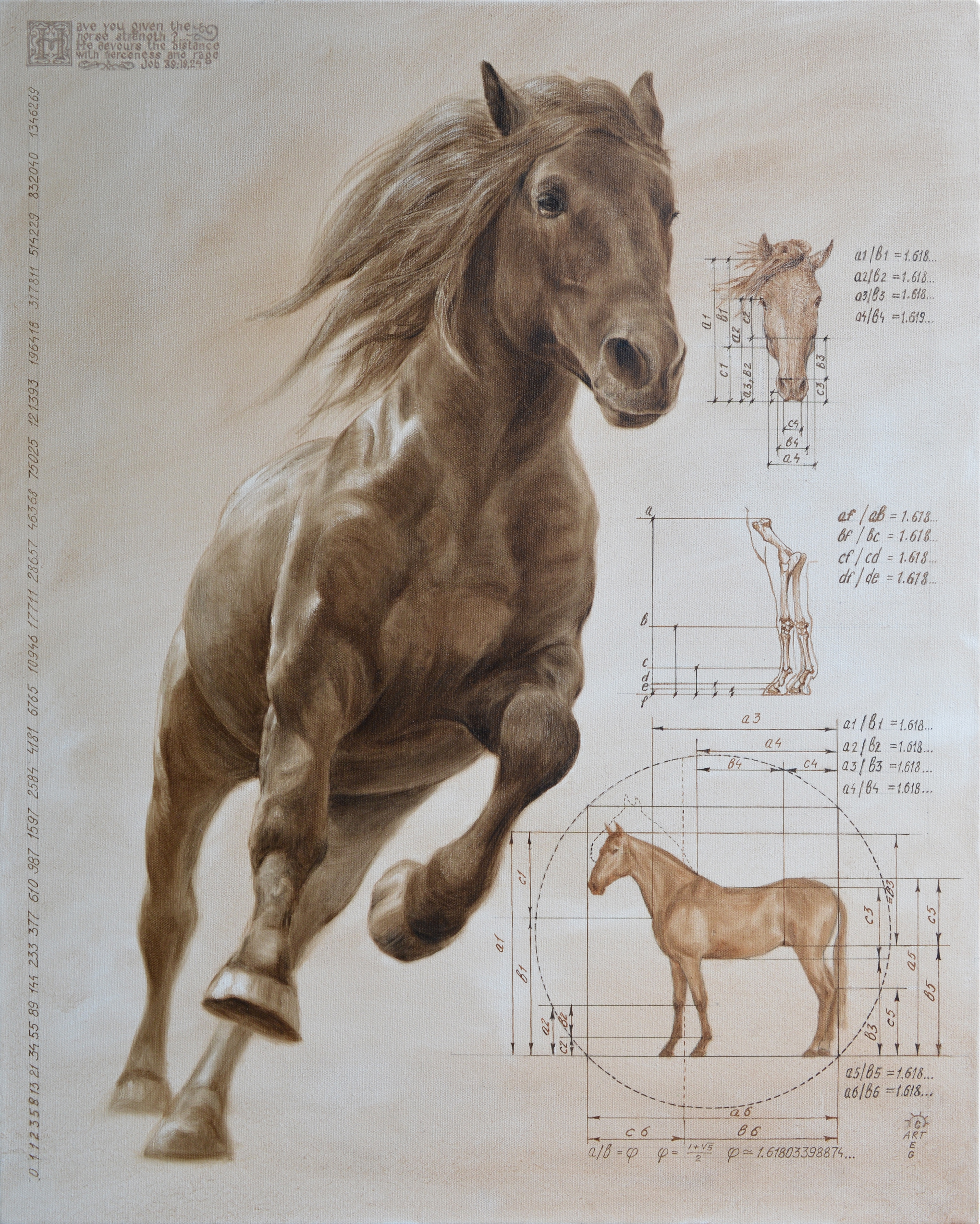Intelligent Design. Stallion. To buy a print, click the link below