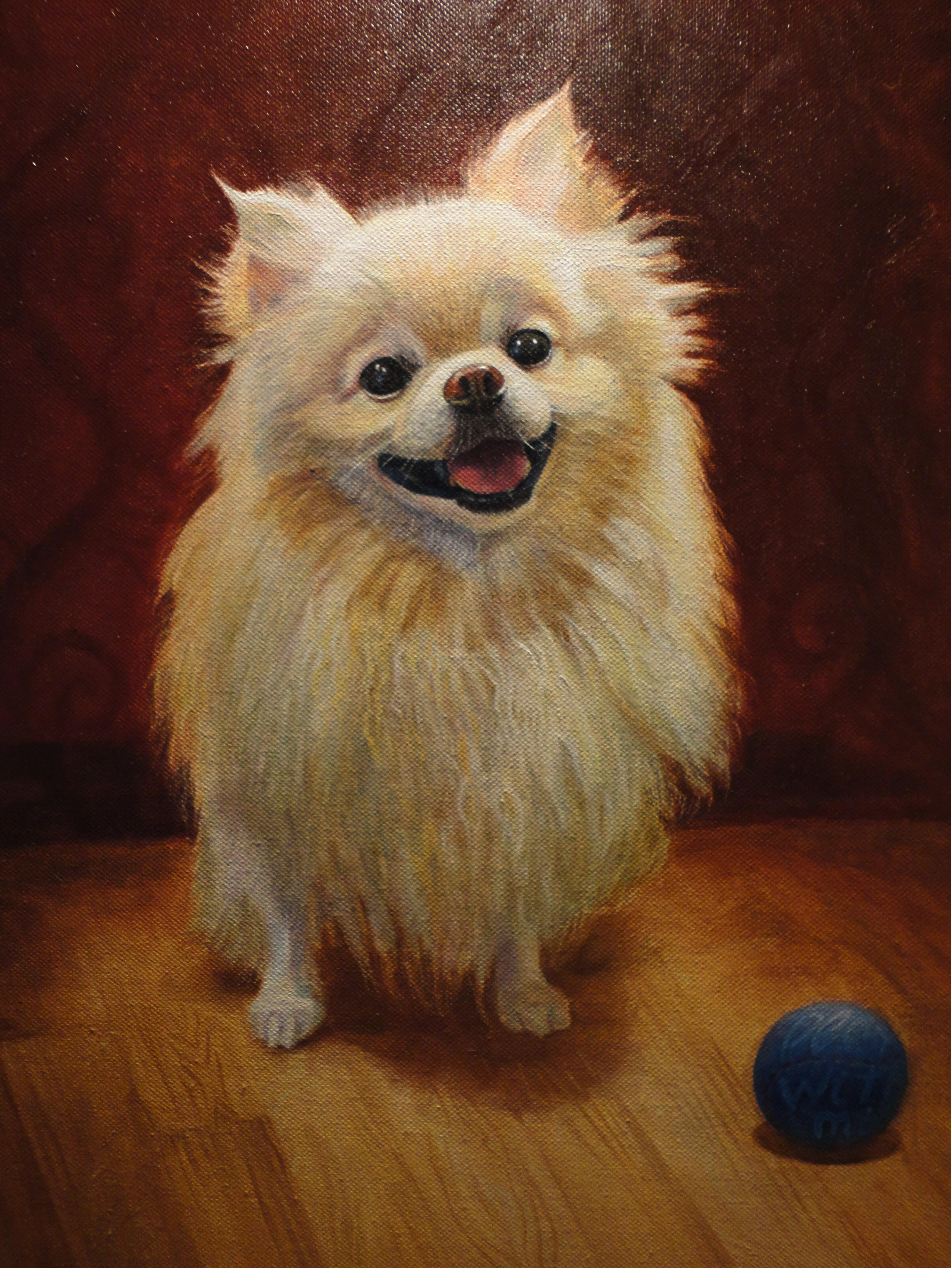 Pomeranian. Oil on Canvas