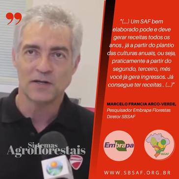 1 #embrapa #saf #agrofloresta #sistemasa