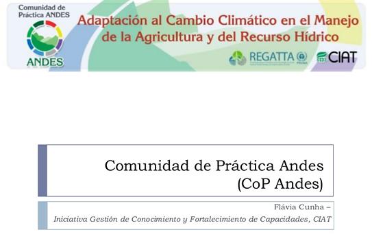 capa presentacion cop an.png