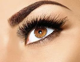 Brown Eyes.webp