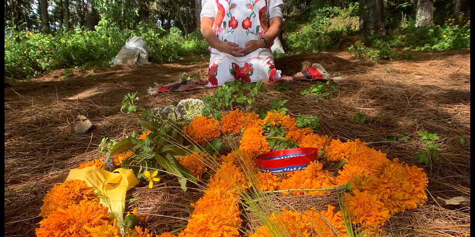 Oaxaca Sacred Medicine and Culture Retreat