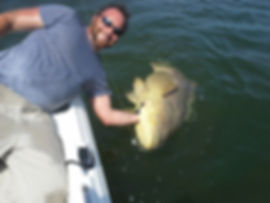 Inshore and Nearshore Fishing. Naples Fishing charter, Marco Island Fishing Charter, Everglades Fishing Charter, Fort Myers Fishing Charter, Cape Coral Fishing