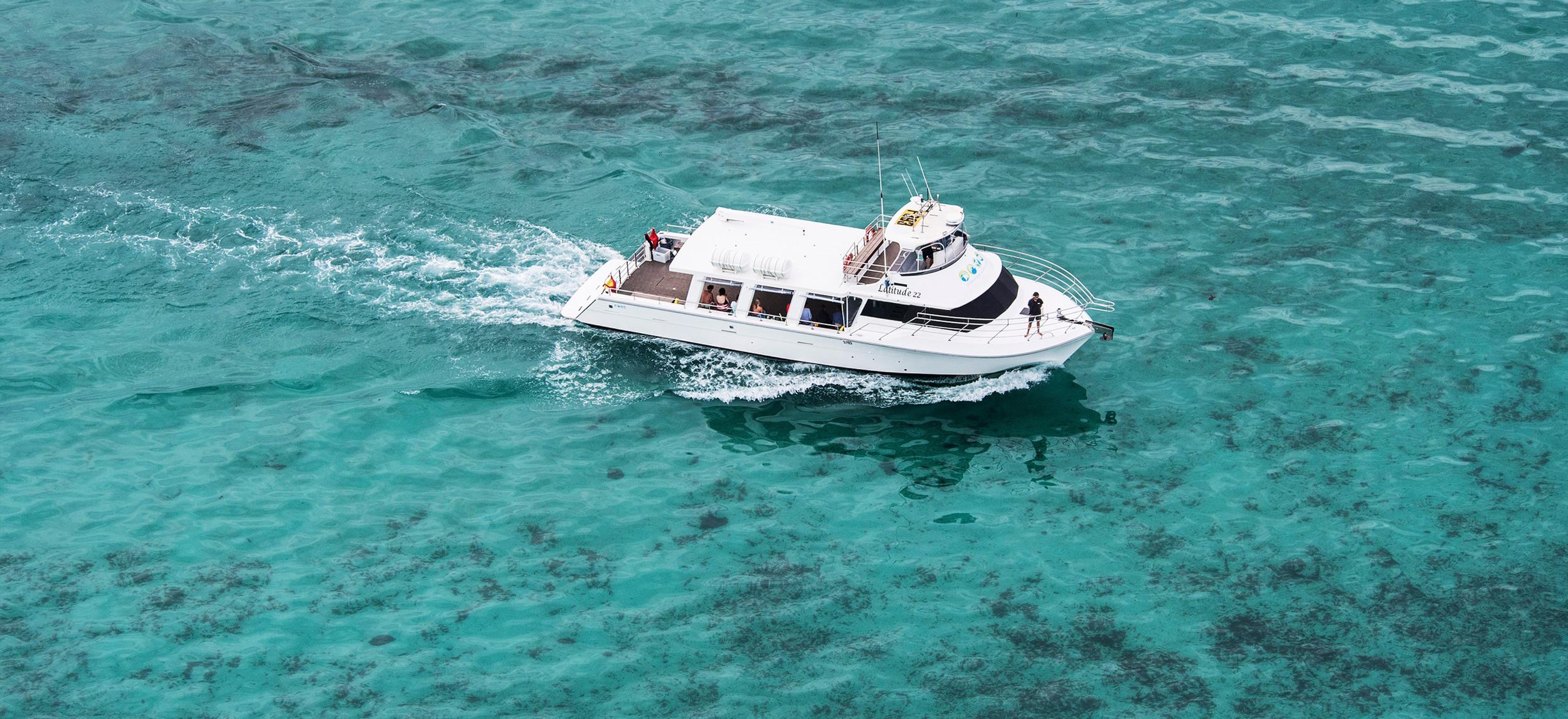 Whale Shark Tours Ningaloo Reef | Exmouth WA | Ocean Eco Adventures