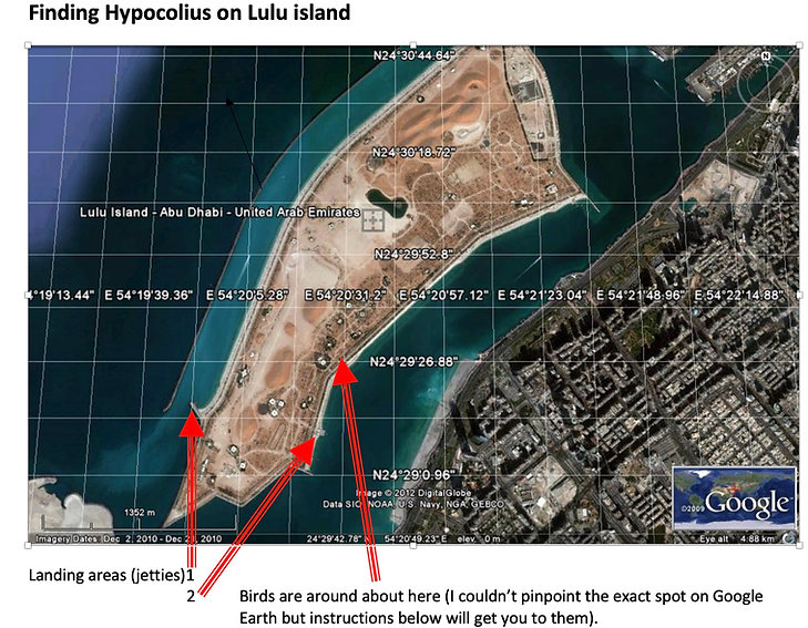 Lulu Island map.jpg
