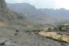 Wadi_Shaam3.jpg