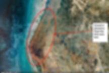 Dalma-plantation.jpg