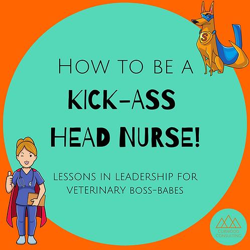 Workshop - How To Be A Kick-Ass Head Nurse
