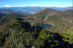 Parque El Cañi