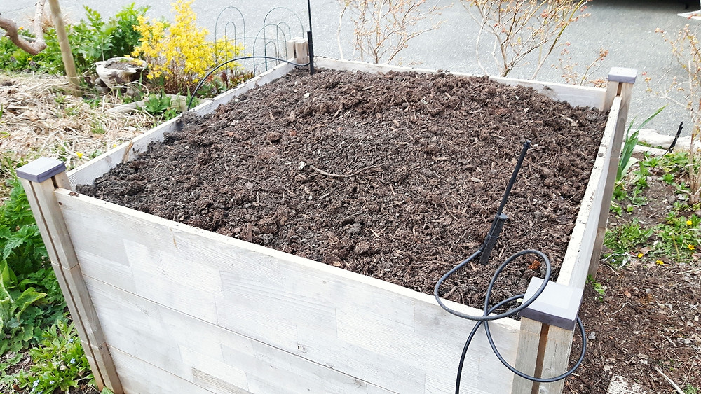 Raised bed filled with soil blend for vegetables