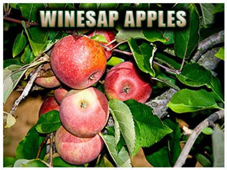 Winesap