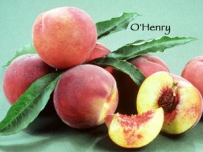 O'Henry Peach
