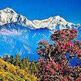 trekking nepal.jpg