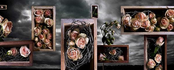 Rose-Boxes.jpg