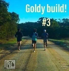 Blog 58- Goldy Build! -Entry 3 By Dane Verwey