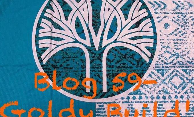 Blog 59-Goldy Build! -Entry 4 By Dane Verwey