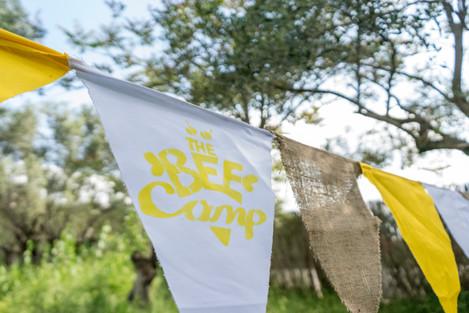 Copy of DSC09108__Bee Camp_21.04.18_Mari