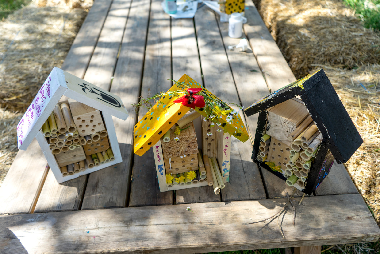 Copy of Copy of Photo 2 - Insect Hotel.j