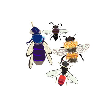 wild-bees-icon.png