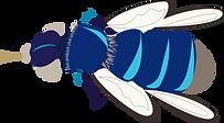 bleu-bees.png