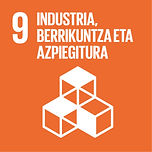 Eus Sustainable Development Goals_09.jpg