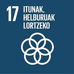 Eus Sustainable Development Goals_17.jpg