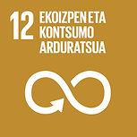 Eus Sustainable Development Goals_12.jpg